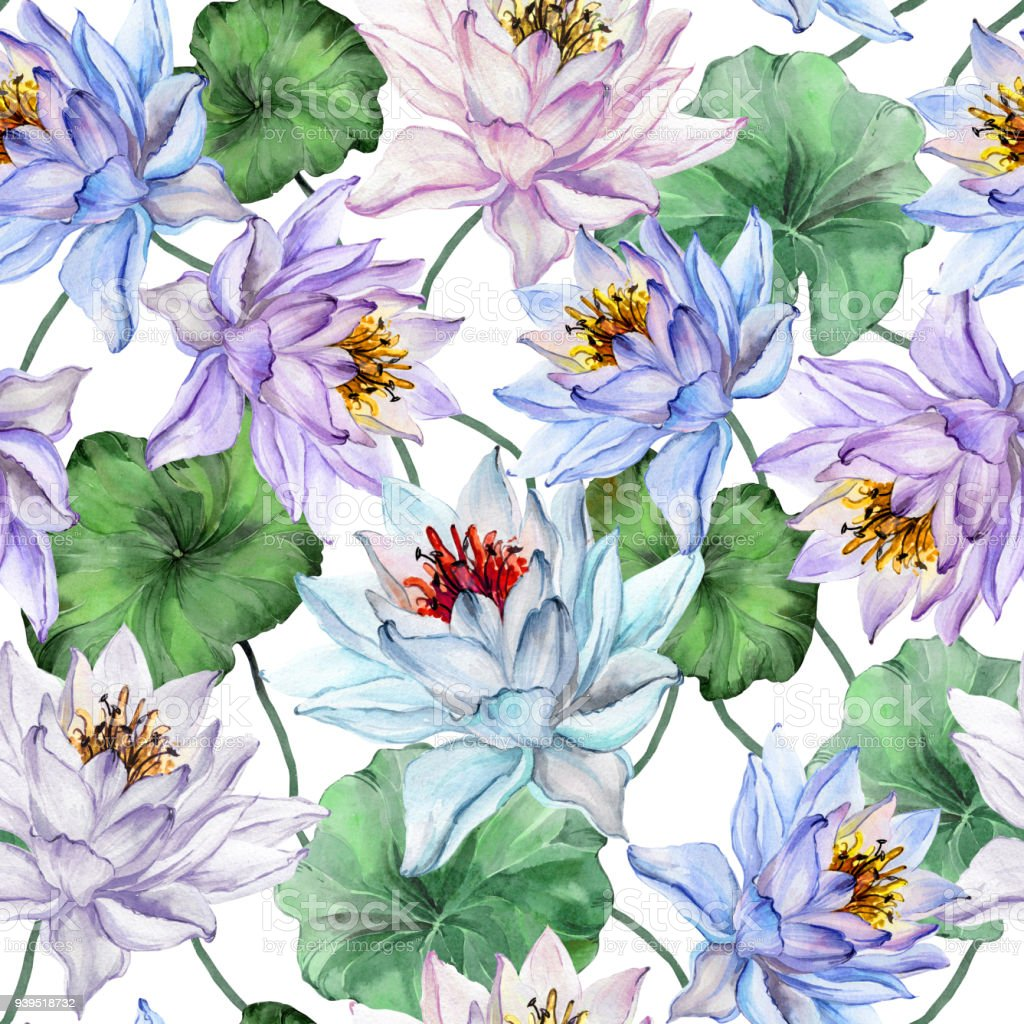 Beautiful floral seamless pattern large blue and purple lotus beautiful floral seamless pattern large blue and purple lotus flowers with leaves on white background izmirmasajfo