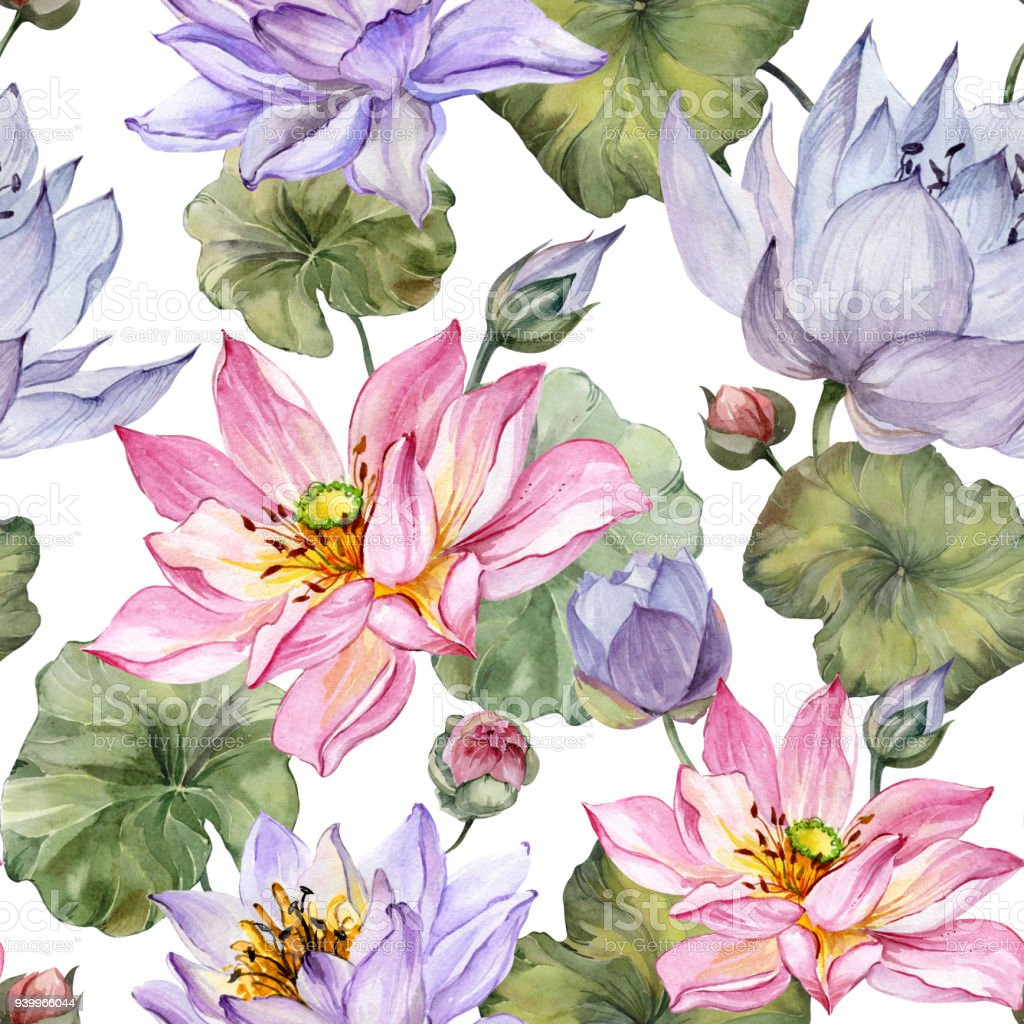 Beautiful Floral Seamless Pattern Large Pink And Purple Lotus