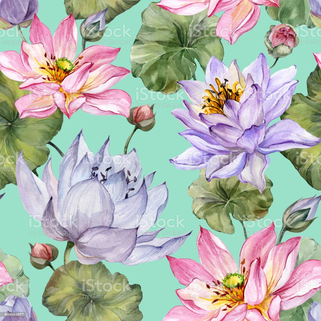 Beautiful floral seamless pattern large pink and purple lotus large pink and purple lotus flowers with leaves on turquoise background izmirmasajfo