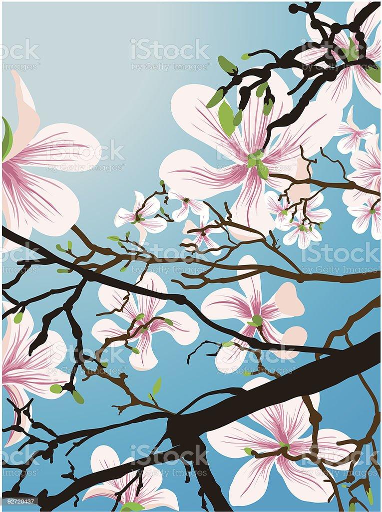 beautiful flowers royalty-free stock vector art
