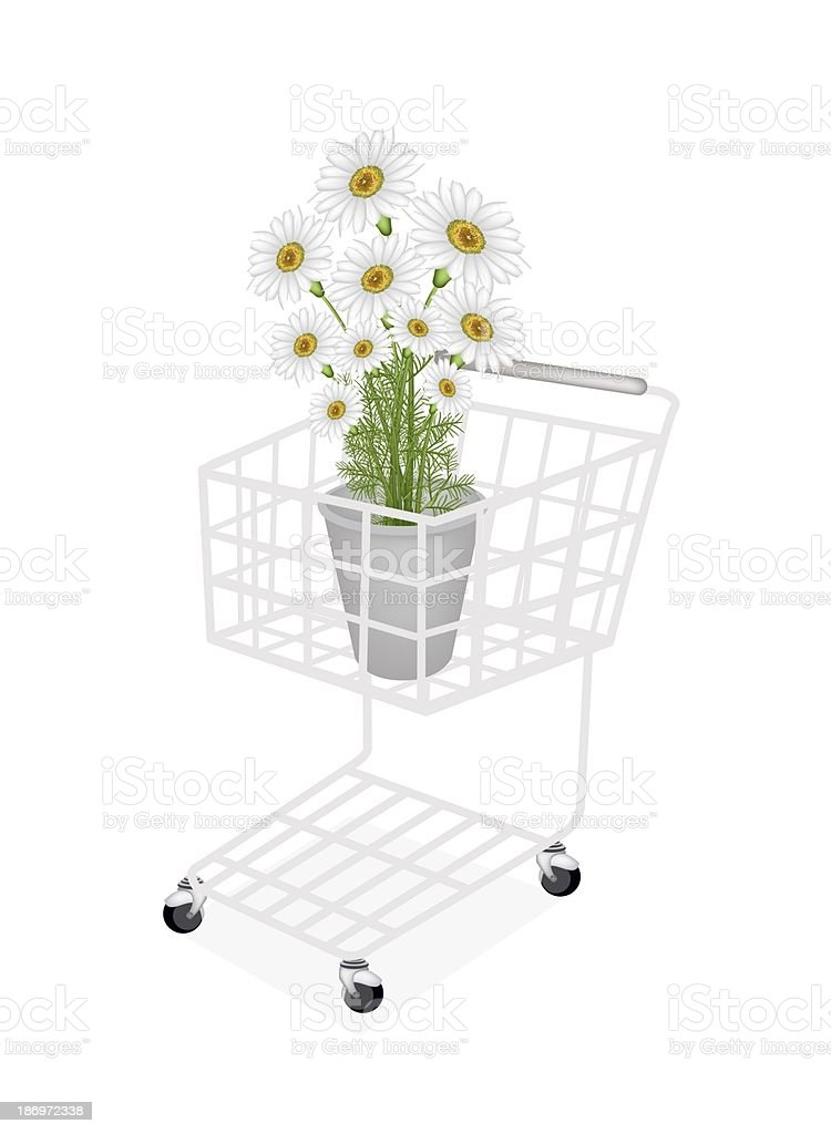 Beautiful Fresh Chamomile in A Shopping Cart royalty-free stock vector art