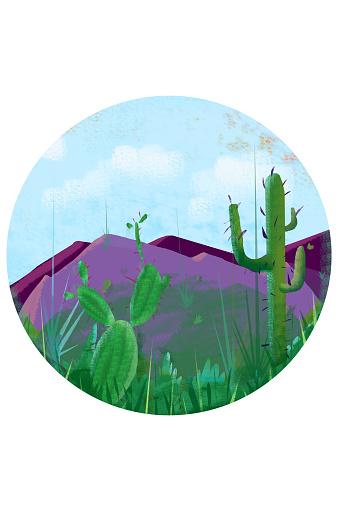 Beautiful landscape with cactus