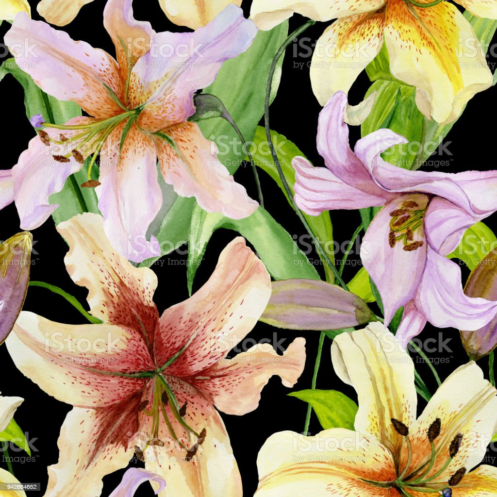 Beautiful lily flowers with green leaves on black background beautiful lily flowers with green leaves on black background seamless floral pattern watercolor painting izmirmasajfo