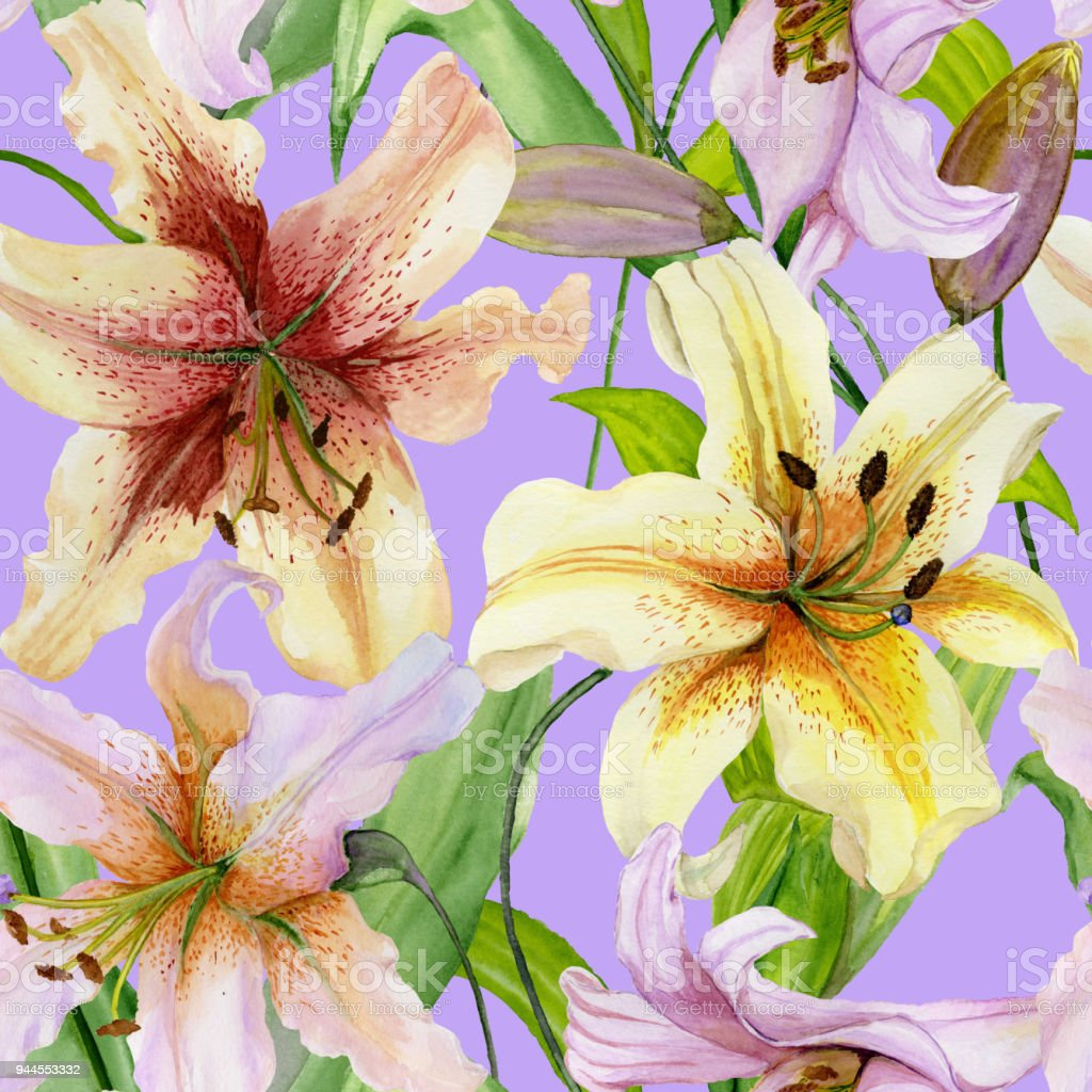 Beautiful Lily Flowers With Green Leaves On Lilac Background