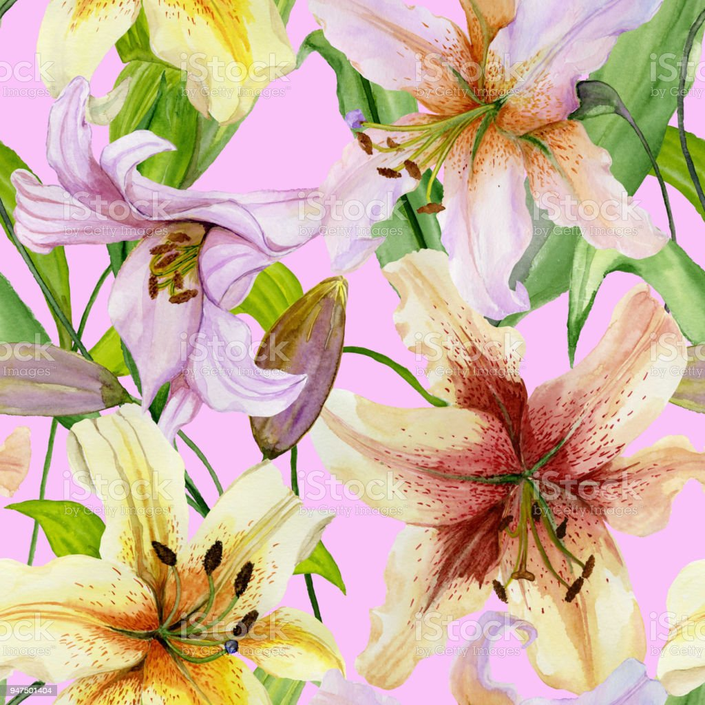 Beautiful lily flowers with green leaves on pink background seamless beautiful lily flowers with green leaves on pink background seamless floral pattern watercolor painting izmirmasajfo
