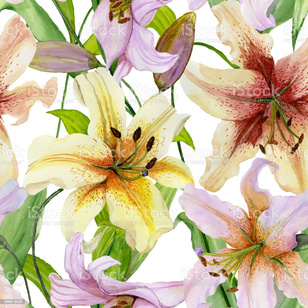 Beautiful lily flowers with green leaves on white background beautiful lily flowers with green leaves on white background seamless floral pattern watercolor painting izmirmasajfo