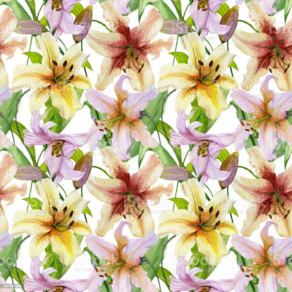 Beautiful lily flowers with leaves on white background seamless beautiful lily flowers with leaves on white background seamless floral pattern watercolor painting izmirmasajfo