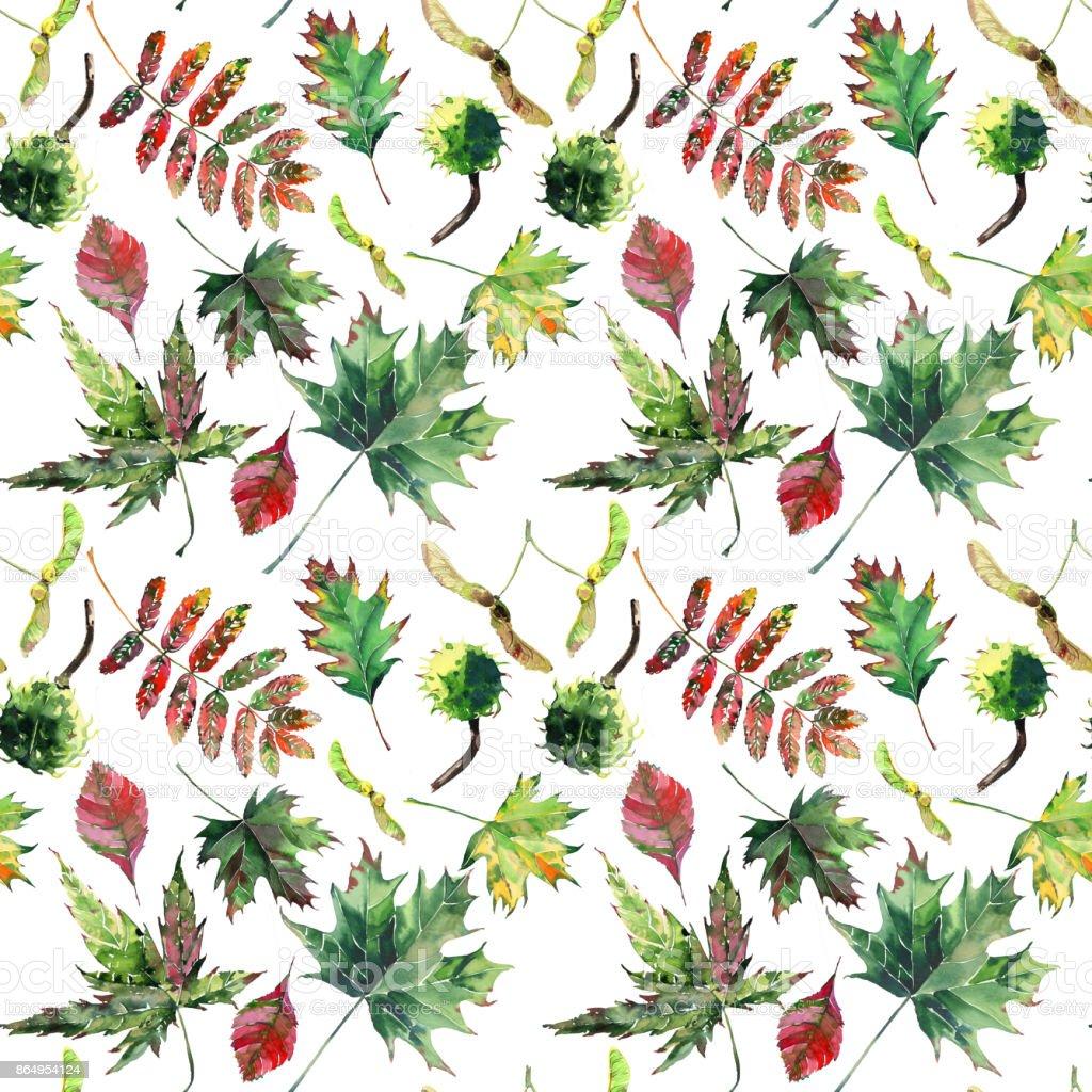sch ne sch ne s e wunderbare grafik helle florale pflanzliche herbst rot orange gr n gelb ahorn. Black Bedroom Furniture Sets. Home Design Ideas