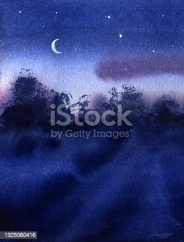 istock Beautiful night landscape. Travels. Starry sky, grass on the side of a rural road. 1325060416
