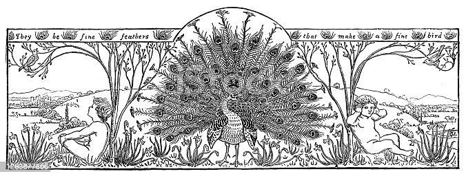 istock Beautiful Peacock Banner 1263877856