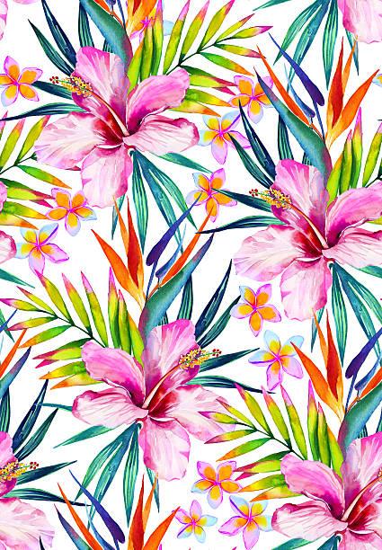 Hermoso patrón sin costuras con hibiscus, el restaurante frangipani y las hojas. - ilustración de arte vectorial