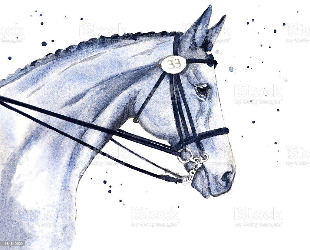 Beautiful Show Horse vector art illustration