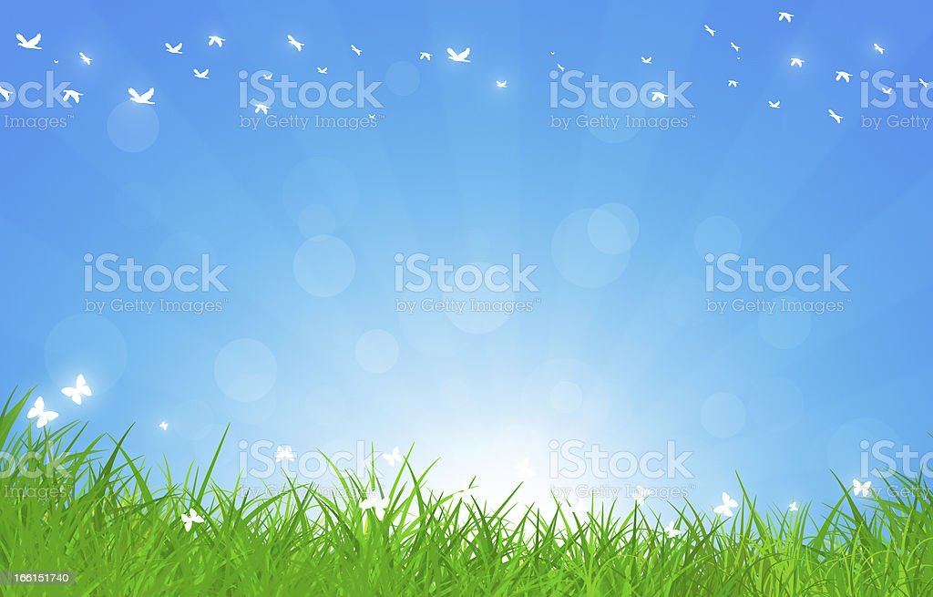 Beautiful Summer Day Outdoor royalty-free stock vector art