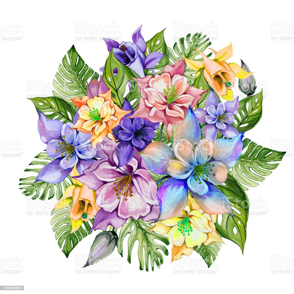 Beautiful tropical flowers bunch of columbine flowers and exotic beautiful tropical flowers colorful aquilegia with buds and monstera leaves bunch of columbine izmirmasajfo