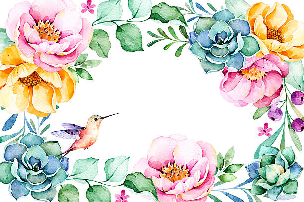 Royalty free hummingbird flower clip art vector images beautiful watercolor frame border with rosesflowerfoliagesucculent plant vector art illustration mightylinksfo