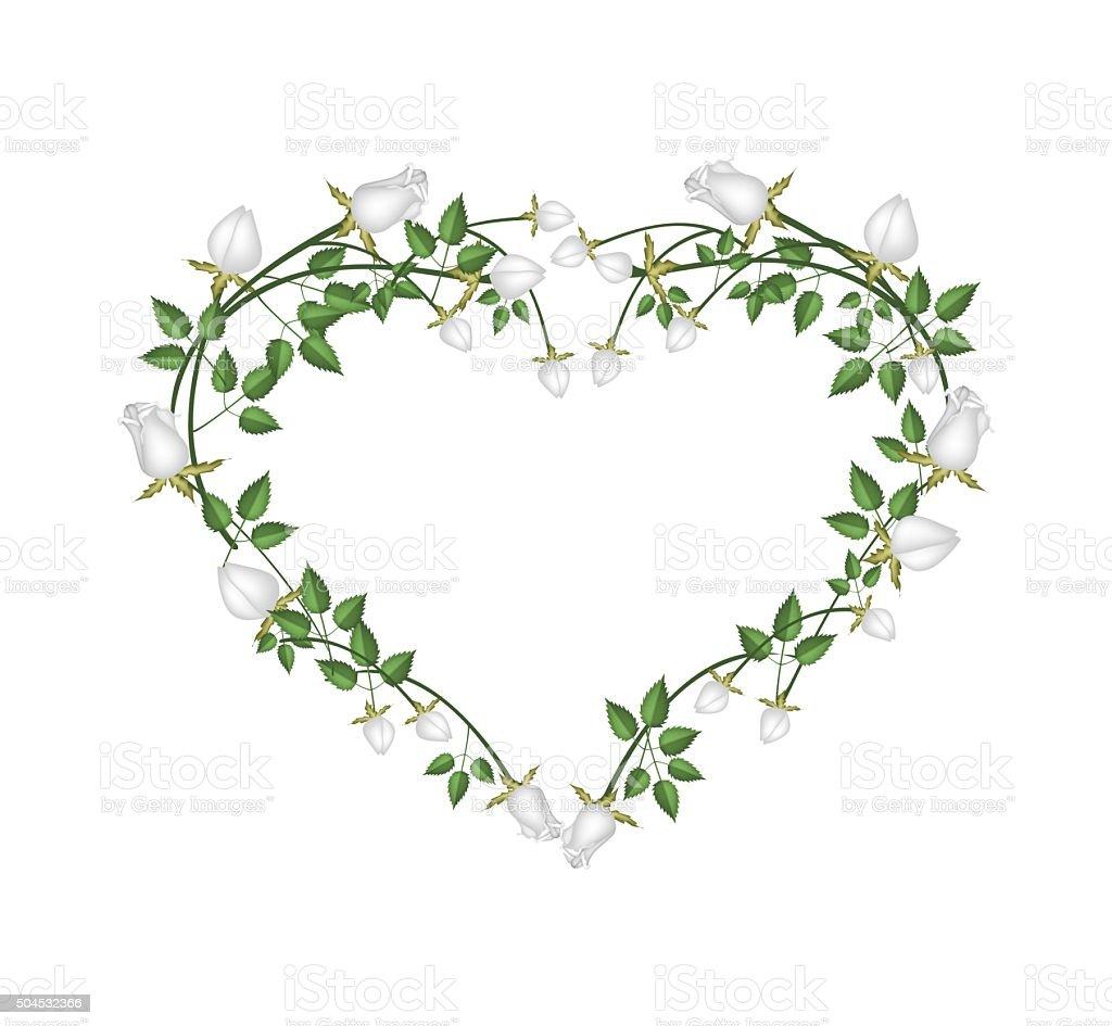 Ilustracion De Rosas Blancas Hermosas Flores En Forma De Corazon Y