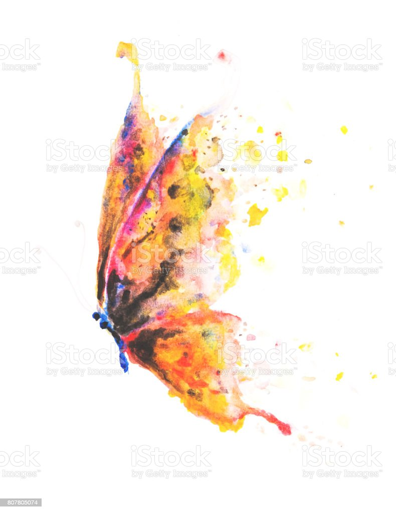 Beautifully hand painted butterfly with colourful yellow, pink, blue and orange wings vector art illustration