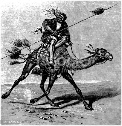 istock Arabian dromedary camel with Bedouin warrior black and white engraving 182429820