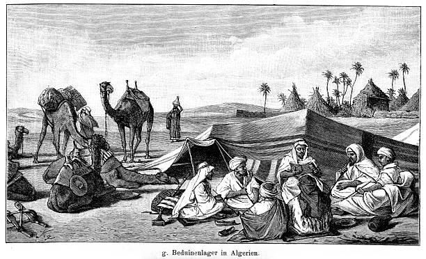 bedouin's camp in algeria - 阿爾及利亞 幅插畫檔、美工圖案、卡通及圖標