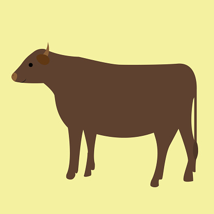 Beef cattle in the green background illustration