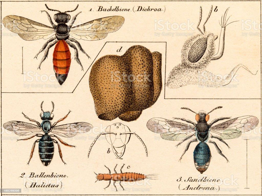 Species Science