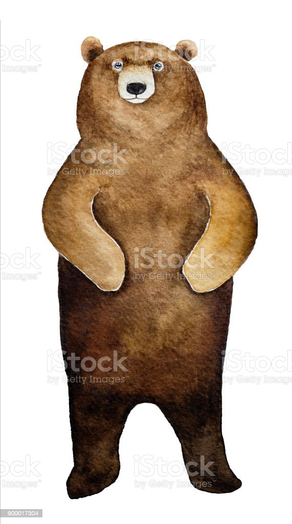 Big brown bear character portrait. vector art illustration