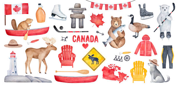 big canada set with various symbols like national flag, maple syrup bottle, lighthouse, hockey skates. handdrawn watercolour paint on white background, cutout clipart for creative design decoration. - canada day stock illustrations