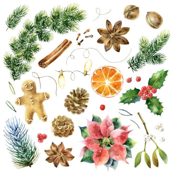 illustrazioni stock, clip art, cartoni animati e icone di tendenza di big christmas set of watercolor elements - mika