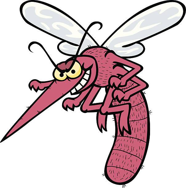 Картинка комар прикол, бумаги сделать