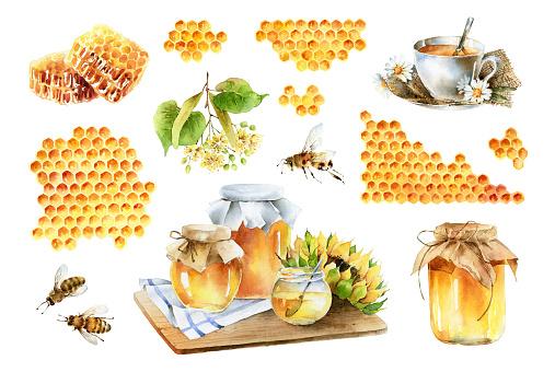 Big watercolor set on theme of honey