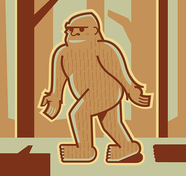 bigfoot or sasquatch - peter bajohr stock illustrations, clip art, cartoons, & icons
