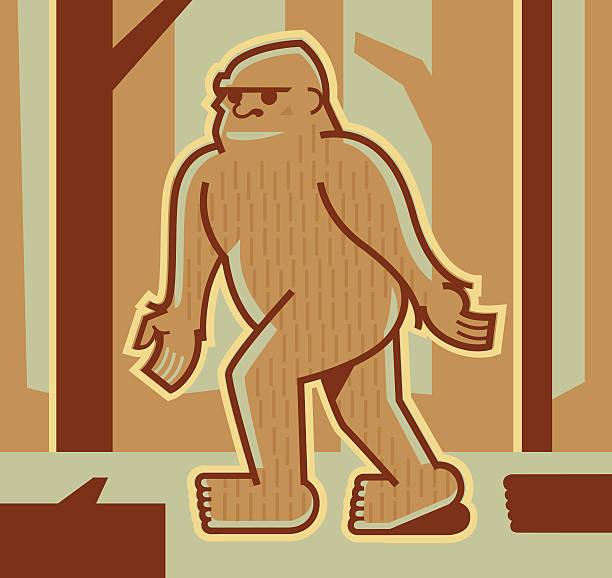 bigfoot or sasquatch - peter bajohr stock illustrations