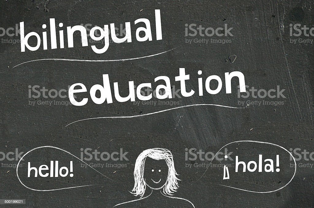 bilingual education vector art illustration