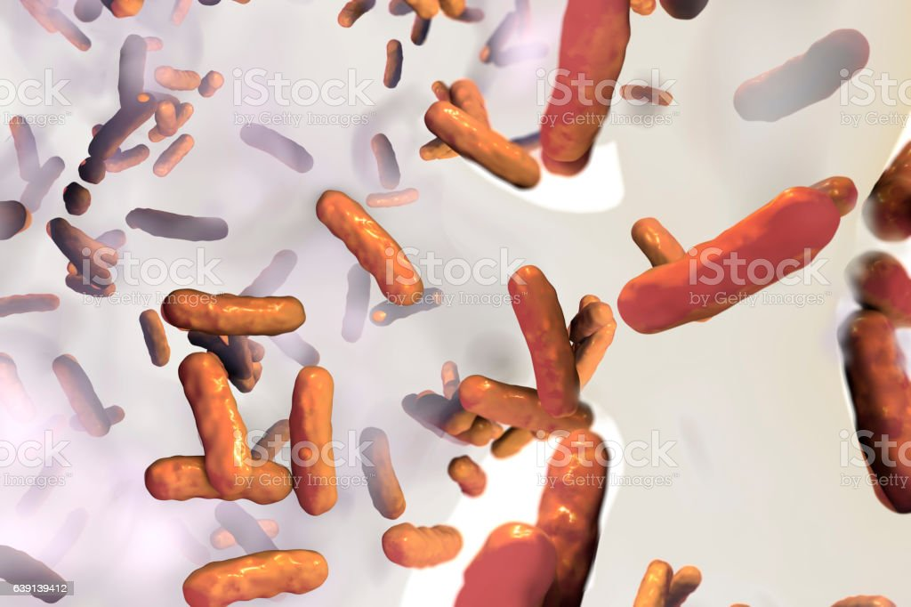 Biofilm of antibiotic resistant bacteria Pseudomonas aeruginosa vector art illustration