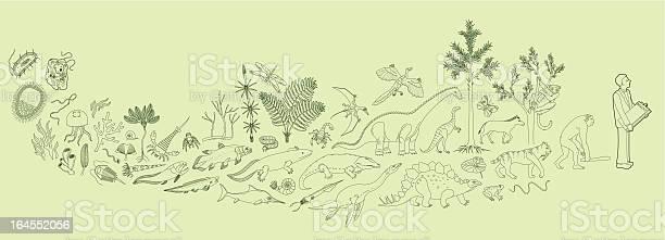 Biology illustration id164552056?b=1&k=6&m=164552056&s=612x612&h=ladyp6o3jvypwhzkbptc3zlkjuvpp8vnrrfwnp2vp48=
