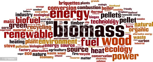 Biomass word cloud concept. Collage made of words about biomass. Illustration
