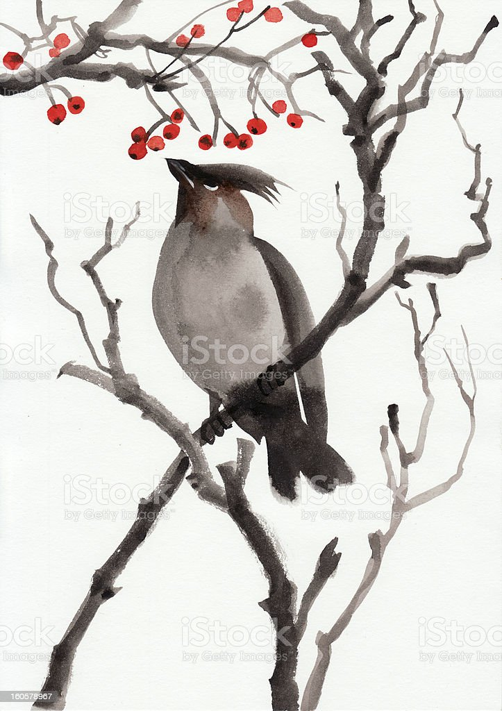 Bird and berry - Royalty-free Animal stock illustration