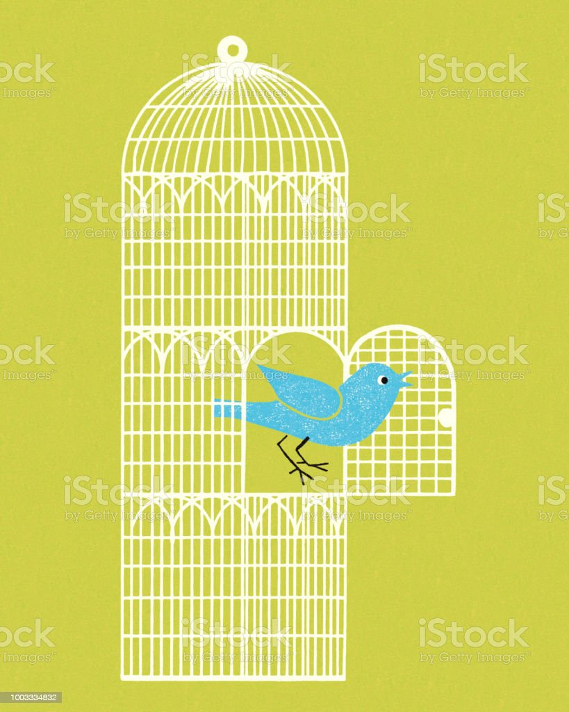 Bird Coming Out of a Cage vector art illustration
