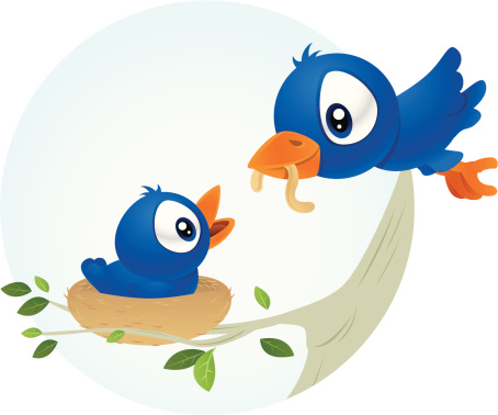 Bird Feeding Stock Illustration - Download Image Now