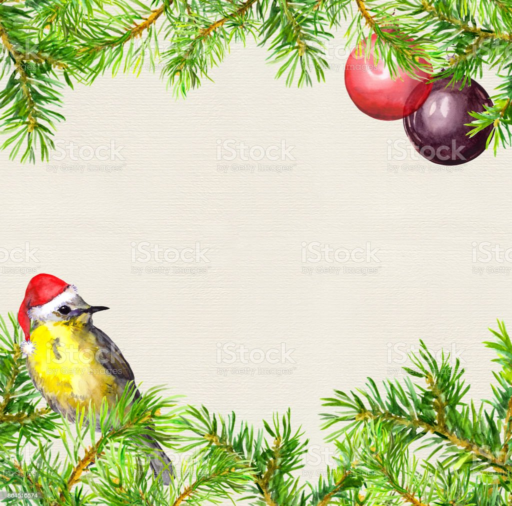 bird in red santa hat christmas tree branches baubles frame christmas card - Red Bird Christmas Tree Decorations