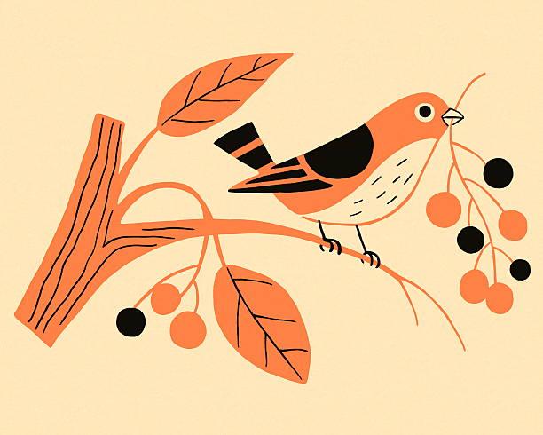 stockillustraties, clipart, cartoons en iconen met bird perched on a branch - neerstrijken