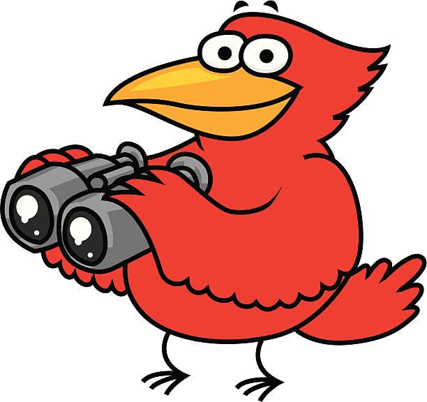 bird watching - bird watching stock illustrations, clip art, cartoons, & icons