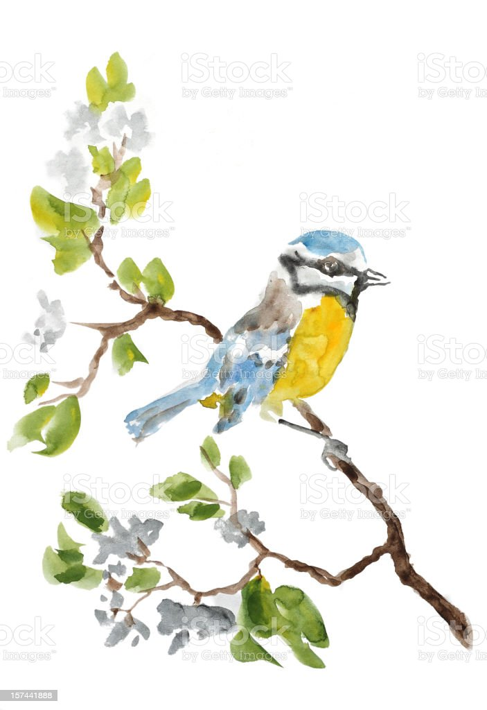 Birdy on a branch royalty-free stock vector art