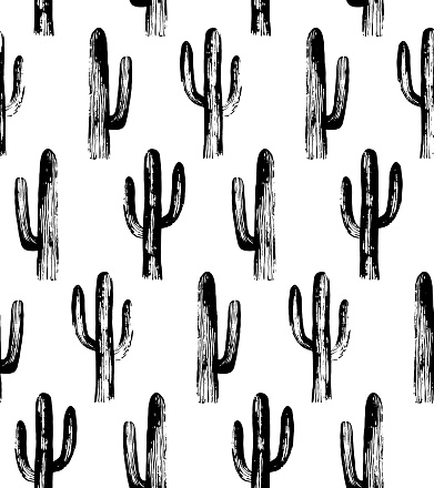 Black and white cactus. Sketch pattern.