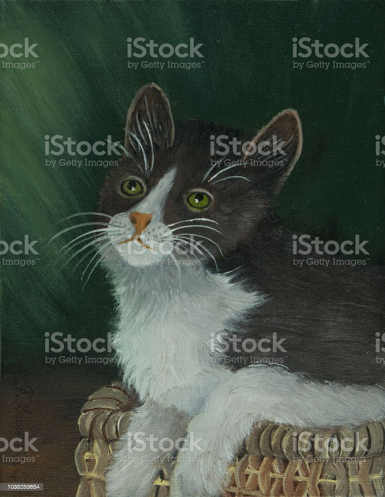 Black And White Cat Against A Green Background Stock Vector Art ...