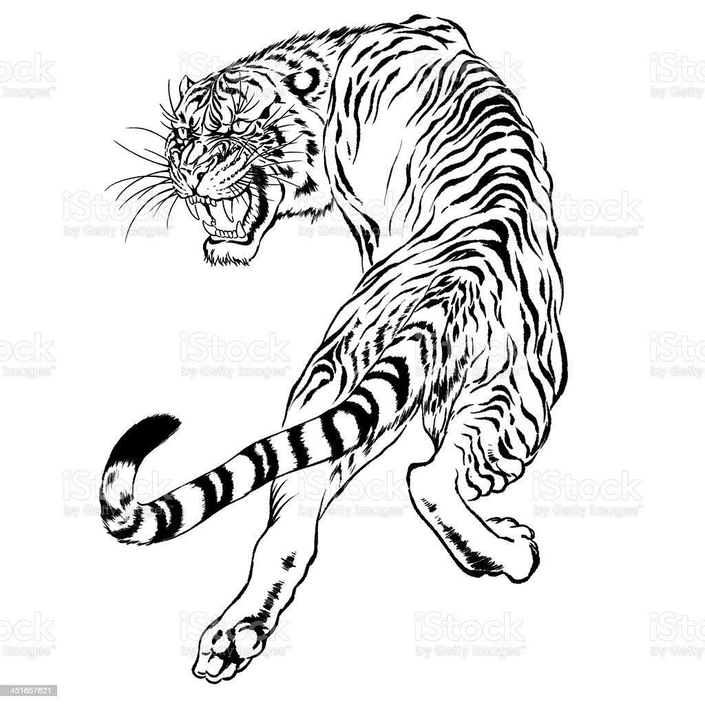 Japanese Tattoo Line Drawing : Black and white drawing of a japanese tiger stock vector
