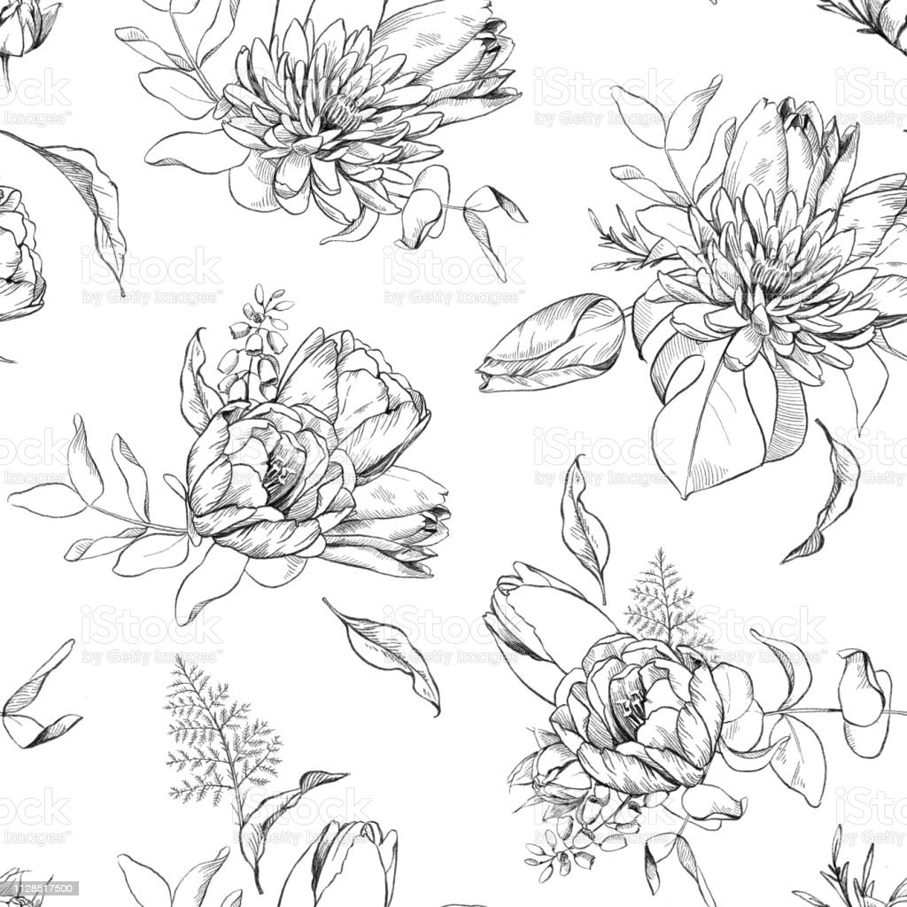 Black and white pencil sketch illustration of tulip aster flowers and eucalyptus leaves seamless floral pattern stock illustration download image