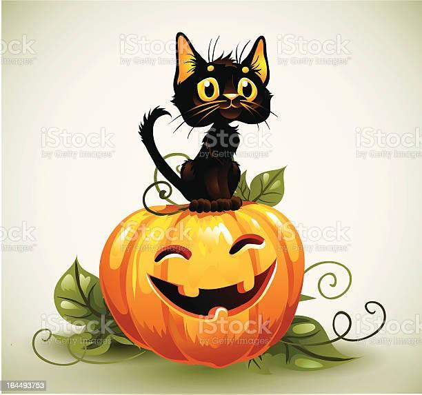 Black cat halloween pumpkin illustration id164493753?b=1&k=6&m=164493753&s=612x612&h=vgnjks8qy7uvdwu1nhjwc77qmbzcn6hka0jqxtdjvn0=
