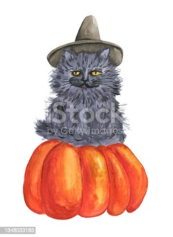 istock A black cat in a hat sits on a pumpkin. Halloween watercolor illustration. 1348033183