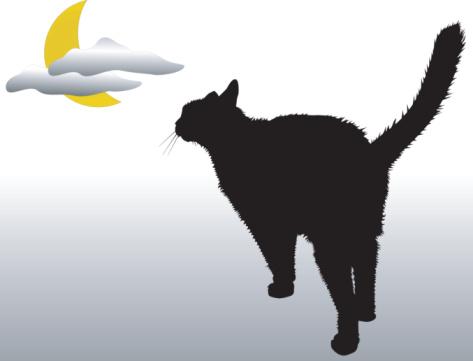 Black Cat Moon (Vector)